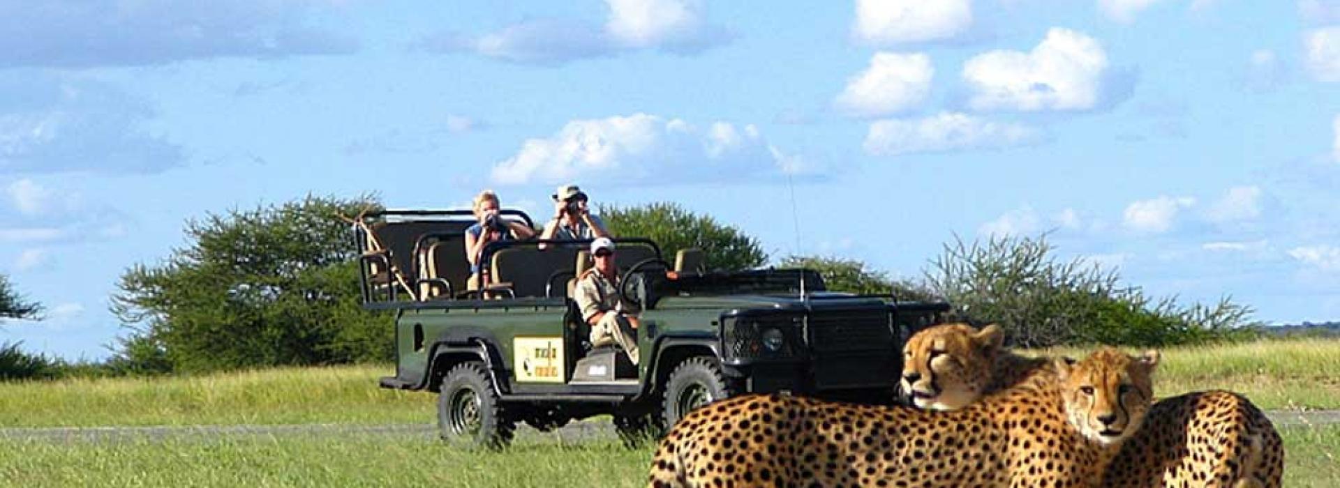 Escape Sudafrica